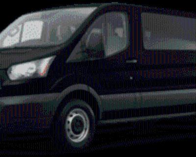 2019 Ford Transit Passenger Wagon T-350 XLT