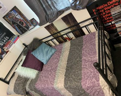 Metal Daybed Frame Twin