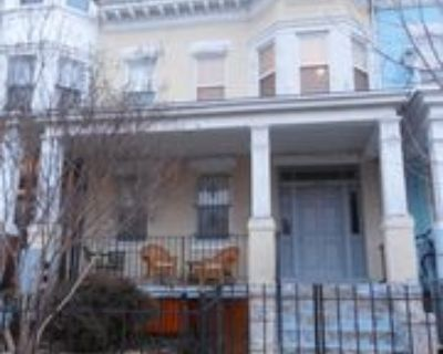 1445 Clifton Street NW - 3 (Lower Unit), Washington, DC 20009 2 Bedroom Apartment for Rent for $1,995/month