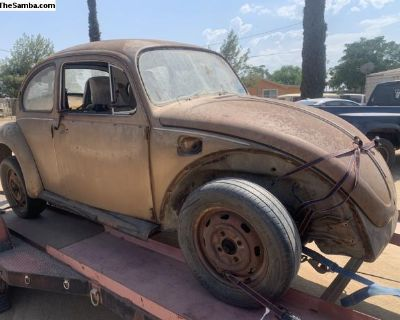 1976 beetle body(only)