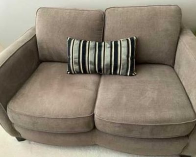 Two cloth love seats