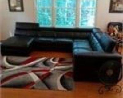 Full House Estate Auction In Manasses