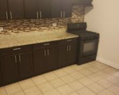 8258 South Langley Avenue ##1, Chicago, IL 60619 3 Bedroom Apartment