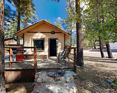 Hold Me Closer, Tiny Cabin - Dog-Friendly Yard, Walk to Ski Beach Park - Big Bear Lake