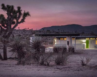 Desert Diamond: New Mid-Century Modern Home w/ Hot Tub & Outdoor Kitchen- Joshua - Yucca Valley