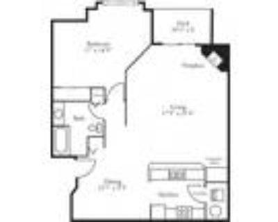 The Club at Brookfield Hills Apartments - CBH Lofts - 1 Bed, 1 Bath Dunes