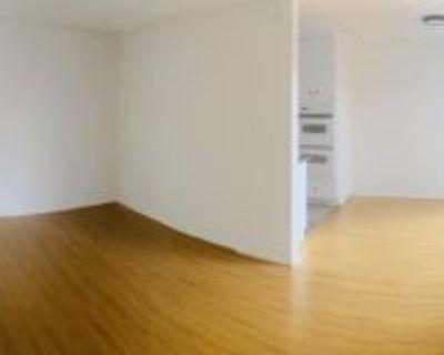 123 123 South Catalina Street - 102, Los Angeles, CA 90004 1 Bedroom Condo
