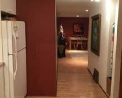 2411 28 Ave Sw, Calgary, AB T2T 1L1 1 Bedroom Apartment