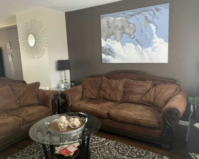 Make me an offer! Couch And love seat