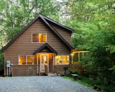 Dog-friendly Smoky Mountain cabin - fireplace, hot tub & game loft! - Whittier