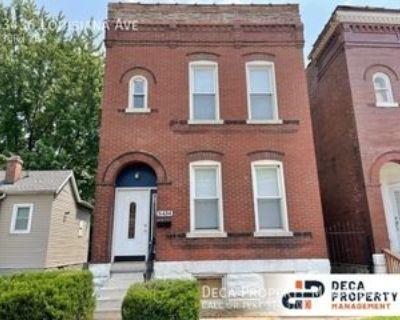 3436 Louisiana Ave, St. Louis, MO 63118 3 Bedroom Apartment