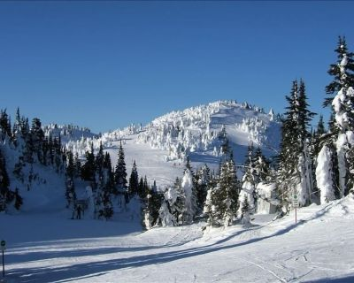 The Best Ski in/Ski Out Location with Private Hot Tub & Bbq - Sun Peaks