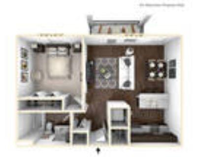 Bella Vista Apartments - The Saxum Studio 1 BR
