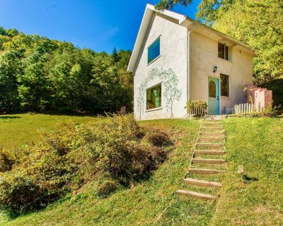 Asheville Area Private Cottage!! Stunning Views Fine Art Interiors Green Built!! - Leicester