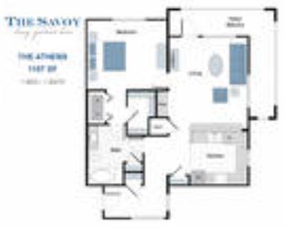 The Savoy Luxury Apartments - The Athens