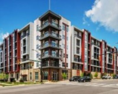 S Graham St, Charlotte, NC 28202 1 Bedroom Apartment
