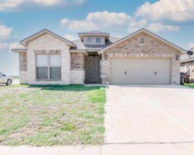 6001 Mile High Ln, Midland, TX 79706 3 Bedroom Apartment