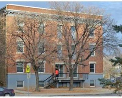 472 Balmoral St, Winnipeg, MB R3B 2P8 2 Bedroom Apartment