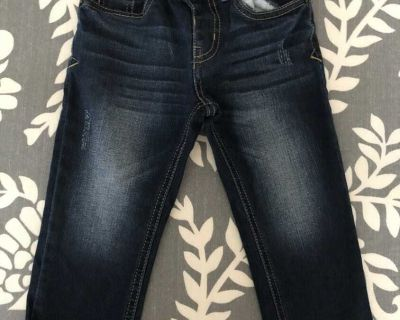 Cat and Jack toddler boys jeans size 2t