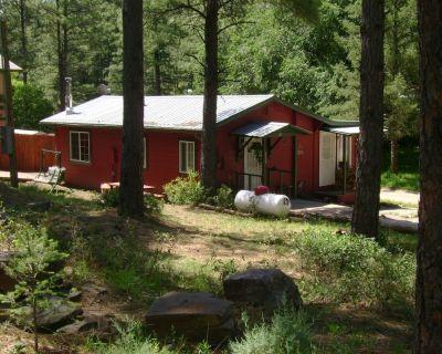 Cozy cabin, nice large party area, horse shoe pit, Se habla espa ol - Ruidoso