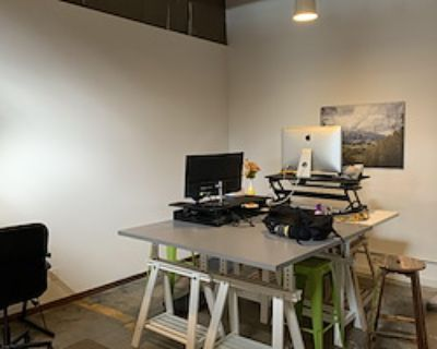 Team Office for 1 at Green Spaces