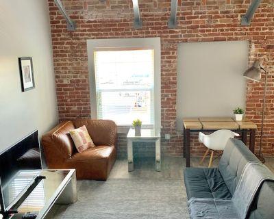 Brick Wall New Loft Apartment on Melrose Avenue - Hollywood