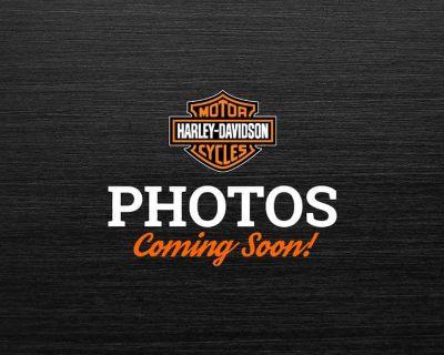 2006 Harley-Davidson Sportster 883 Low Sport Colorado Springs, CO