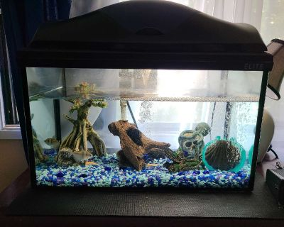 Fish Tank including fish & accessories $120