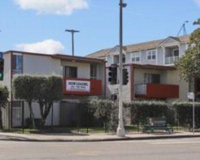 1204 W Adams Blvd #1BDRM, Los Angeles, CA 90007 1 Bedroom Apartment