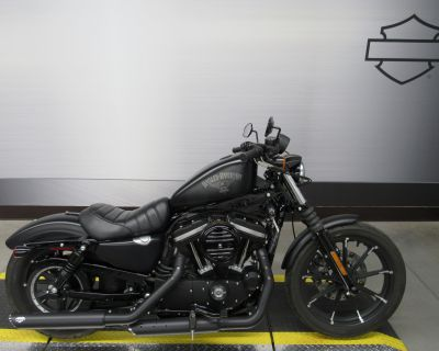 Pre-Owned 2018 Harley-Davidson Iron 883 Sportster XL883N