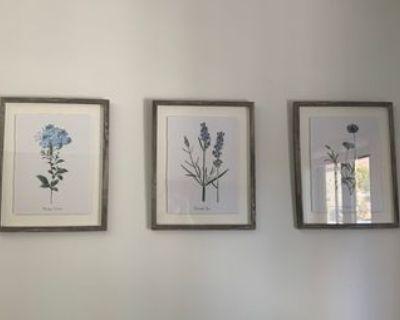 Paintings - Set of 3
