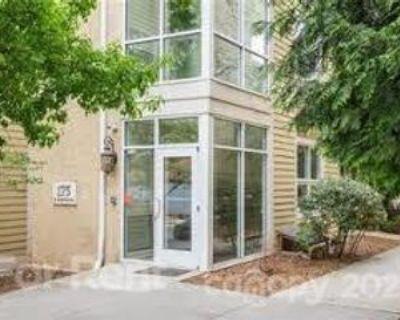 175 S Lexington Ave #301, Asheville, NC 28801 2 Bedroom Condo