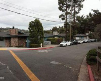 2220 2220 Lake Rd D3, Belmont, CA 94002 Studio Apartment