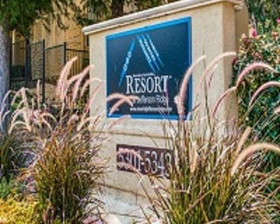 Apartment for Rent in Irving, Texas, Ref# 201379871