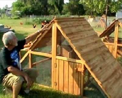 ON SALE- Large Chicken Coops for 12 hens- Movable and Easily Winterized ON SALE THIS WEEK for Louisvil...