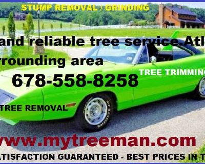Atlanta Georgia Tree Service Atlanta | Free Estimate Tree Removal | Atlanta, GA