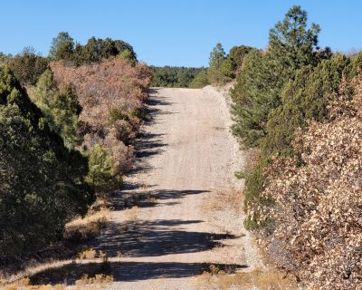 0.5 Acres for Sale in Timberon, NM