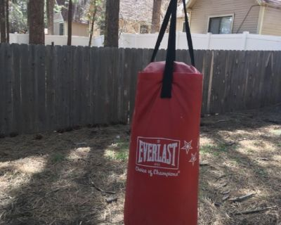 Punching bag with chain