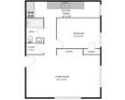 The Denver Biltmore - Basement One Bedroom B2