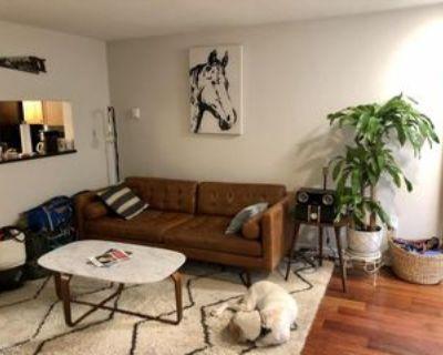 1714 Swann St Nw, Washington, DC 20009 1 Bedroom Condo