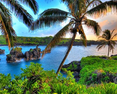 Join to Use Great Health Products from Hawaii
