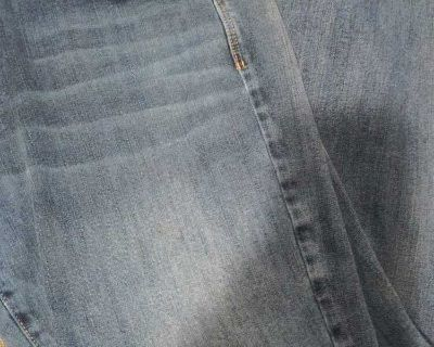 American Eagle size 12 short jeans