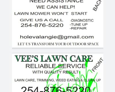Vees lawn care and push mower tuning