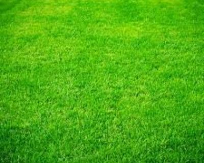 Free Estimates on Lawn Care and Gardening Services, insured!
