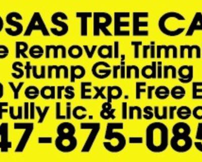 ROSAS TREE CARE Tree Removal, ...