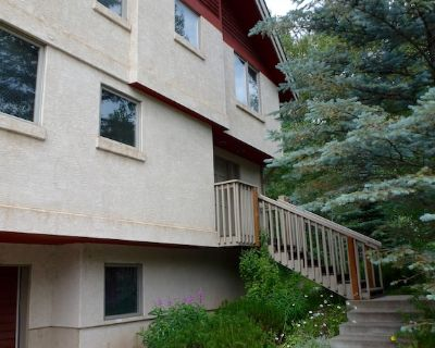 Creek-side home on free in-town bus route that takes you to the ski area. - Vail