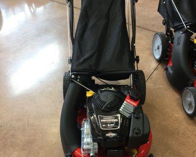 2019 Snapper P2185020 Hi Vac Series 21 in. Briggs & Stratton 190 cc Residential Walk Behind Evansville, IN