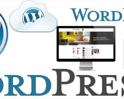 Get Wordpress training Orlando by Expert | Web Guru