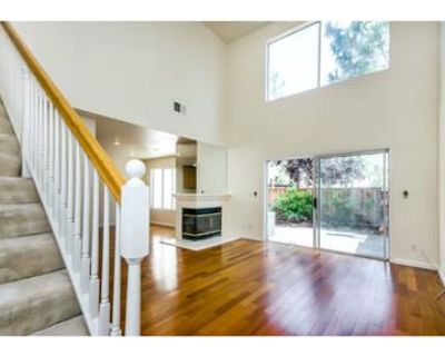 Gorgeous Shapell Home For Rent