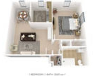 The Villas at Bryn Mawr Apartment Homes - One Bedroom